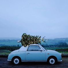 Almost as fun as a one horse open sleigh… . Shoutout to the guys at Ripponden Christmas Tree farm in West Yorkshire for only staring at me like I was mad while I was setting up this picture. Ill put up some behind the scenes and before/after edits on Christmas Tree Farm, Christmas Mood, Merry Little Christmas, Blue Christmas, Xmas, Christmas Ideas, Christmas Aesthetic, Christmas Photography, Nature Photography