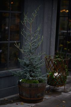 The post Weihnachtsdeko Hauseingang. appeared first on Skandinavisch Diy. The Effective Pictures We Offer You About Entrance outdoor A quality p Christmas Garden, Cozy Christmas, Scandinavian Christmas, Little Christmas, Country Christmas, Christmas Holidays, Christmas Feeling, Christmas Decorations For The Home, Tree Decorations