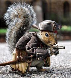 Squirrel Hunt Leads To Lockdown Of Lexington One School | Weasel Zippers