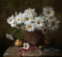 Daisy still life with pears - Flower Vases, Flower Art, Flower Arrangements, Still Life Photos, Still Life Art, The Joy Of Painting, Diy Painting, Daisy, Illustration Botanique