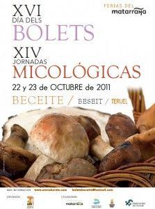 XVI Dia dels Bolets y XIV Jornadas Micológicas en Beceite.