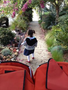 Mama Needs to Run: running with the double stroller