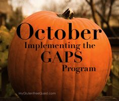 Quest to Health: Implementing the GAPS Program   My Gluten Free Quest
