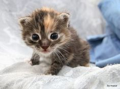look my eyes I need a hug http://ift.tt/2iSsBIw