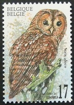 7900  Framed Postage Stamp Art  Strix aluco by PassionGiftStampArt, $12.90