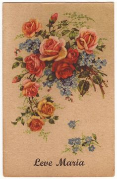 French postcard - Bouquet of roses and forget me not, unused greeting card - Antique romantic fine art flower postcard - 1930's (B786)