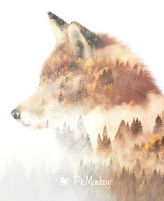 Double exposure has evolved from accident to artform, and we've put together a short video tutorial on how to create your own in PicMonkey. ( I like this design because it shows that the forests are not ours. They are the animals forest. Animal Sketches, Animal Drawings, Animals Tattoo, Wow Photo, Double Exposure Photography, Animal Photography, Levitation Photography, Surrealism Photography, Water Photography