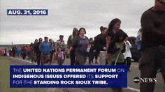 Timeline of Events Surrounding the Dakota Access Pipeline Video - ABC News