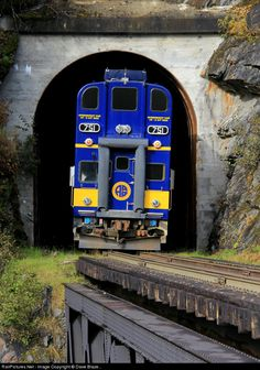 Alaska Division Mainline - MP 51.8 (more..) » Chugach National Forest, Alaska, USA (