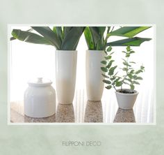 Ceramica con plantas en la cocina ··· #deco #decor #decorating #designyourlife #lifestyle #decoração #interiordesign #interiordecor #decotrends #ceramic #ceramica #green #verde