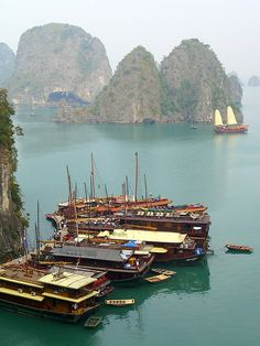 Halong Bay, Vietnam | Boats line up at the dock, waiting for tourists to return from the cave.  Tourist boats come in different sizes and styles, from the more private boats (up to 16 people) to the group floats (30 to 40 people).