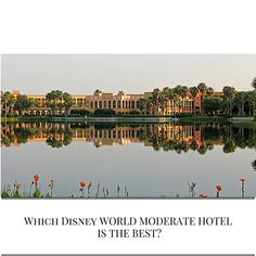 Which Disney World Moderate Hotel is the Best? – EverythingMouse Guide To Disney