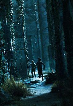 """The Maze Runner """" I must be Runner - Thomas"""""""