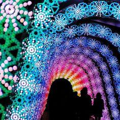 Festival de Luzes - Japão
