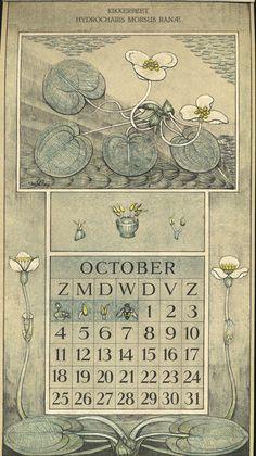 Le Roy, Charles, illustrator. October. Botanische kalender (Dutch botanical calendar). 1925.