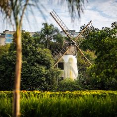 Porto Alegre é repleta de #LugaresInspiradores. Um deles é o #ParqueMoinhosdeVento conhecido também como Parcão. Com mais de 10 hectares de belezas naturais ele remonta ao século XVIII quando Antônio Martins Barbosa estabeleceu seu moinho de vento. Descubra mais lugares inspiradores como esse em @TIMBrasil. #TIMBrasil #FazerDiferente #Publi  Repost de @mmcredie