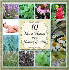 10 Must Haves for a DIY Healing Garden - Medicinal Gardening