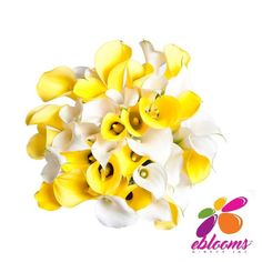 Bridesmaid Mini Callas More colors available - EbloomsDirect Types Of Flowers, Fresh Flowers, Classic Romantic Wedding, Calla Lily Flowers, Bride Bouquets, Stems, Contemporary Design, Special Events, Bloom