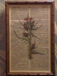 painted pages from an old book, very pretty