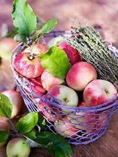 Juicy autumn apples