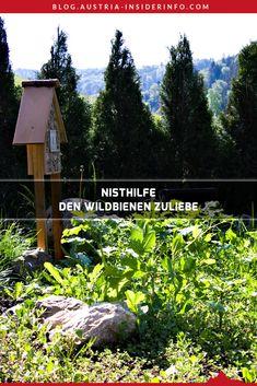 Mit einer Nisthilfe (oft irreführend auch Insektenhotel oder Bienenhotel genannt) kannst du Wildbienen ein schönes Zuhause schaffen. Ich habe mir deshalb eine solche Nisthilfe zugelegt. Direkt angrenzend an meine Wildblumenwiese, die einen voll gedeckten Tisch quasi vor der Haustür bietet. In diesem Artikel stelle ich dir meine Unterkunft für Wildbienen vor, welche Erfahrungen ich damit gemacht habe und was du beim Kauf einer solchen beachten solltest. Austria, Zero, Nature, Travel, Sustainable Ideas, Sustainability, Insect Hotel, Naturaleza, Viajes