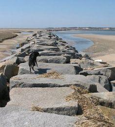 Breakwater april 2007.jpg