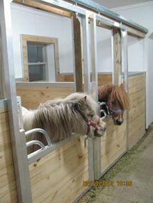 Miniature Horse Stalls
