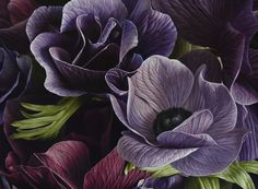Ode to Anemone - Mia Tarney: Anemones, oil on canvas - The Green Gallery - issue #3
