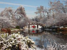 Híd, Winter, Fekvő, Snow, Kültéri, Hideg, Táj