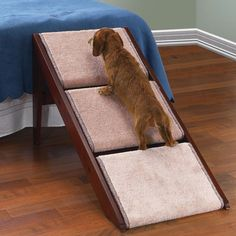 The Pet Ramp And Staircase - Hammacher Schlemmer - This pet staircase converts into a ramp in seconds, providing a means for older or arthritic pets to reach sofas or beds without exerting undue stress on joints and muscles. The steps fold down to form a 30º ramp that allows pets to ascend and descend safely.