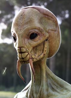 Your professional future may not be as ugly as it seems to be. Like a aliens Alien Concept Art, Creature Concept Art, Creature Design, Aliens And Ufos, Ancient Aliens, Aliens History, Alien Creatures, Fantasy Creatures, Alien Character