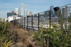 Susan Philipsz 2016 Lachrimae, a seven-part sound piece based on the image of a single falling tear, on the High Line at the Rail Yards. Here, the immersive installation accompanies visitors as they walk along the Hudson River. Sound Installation, Sound Art, Wire Fence, High Line, Hudson River, Line Art, United Kingdom, Skyscraper, Concept