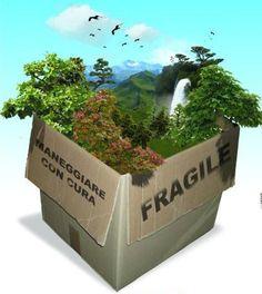 Sviluppo Sostenibile - Corso online Università ILLINOIS ( clicca l'immagine x leggere il post )