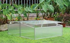 Grow Wise Double Cold Frame DD Greenhouse Kit off Aquaponics Plants, Aquaponics System, Hydroponics, Backyard Aquaponics, Cool Things To Make, Things To Come, Zen, Home Greenhouse, Greenhouse Ideas