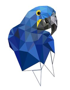 B15 Hyacinth macaw art print Geometric Bird art by villavera