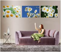 PF3138 Printed & Internal Framed 3 panel oil painting on canvas wall art pictures as unique gifts little Daisy flowers smiling