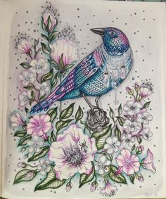 #dagdrommar  #hannakarlzon --> If you're in the market for the best coloring books and supplies including colored pencils, watercolors, gel pens and drawing markers, logon to http://ColoringToolkit.com. Color... Relax... Chill.