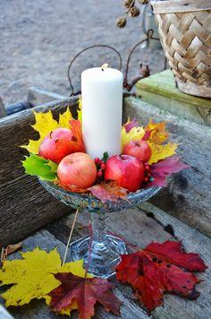 Välkommen Oktober,  med dina gyllene löv, frostiga morgnar och klara kalla nätter...  Kanske är det så vackert just...