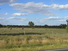RURAL LAND - OWNER SAYS SELL! http://farmproperty.com.au/property/124-rural-land-owner-says-sell Looking for good land - 190 acres of freehold country available near Clermont.  #QLD #ForSale #RealEstate #FarmForSale #LuxuryRealEstate #Farm #FarmingAustralia #FarmsAUS #Farmers #Agriculture #FarmLife #FarmLove #FarmersKnowFood  #AgTech #FarmsAUS #Grazing