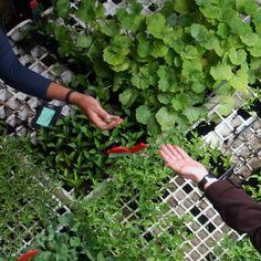 Agroecología, artesanía y ecodecoración en Feria #BioCultura Barcelona 2014 Barcelona, Outdoor Structures, Get A Life, Barcelona Spain