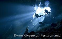 Diving in the Cenotes of Yucatán, México. With Dive Encounters. Buceando en los cenotes de Yucatán. Buceo México.