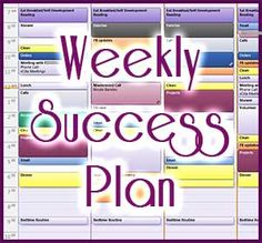 Blog post at The Time Management Expert : Weekly Success Plan is a feature of the Life System Organizer - a step-by-step program to help WAHM entrepreneurs to create harmony and bala[..]