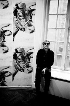Andy Warhol, cow wallpaper, New York  by: Steve Schapiro