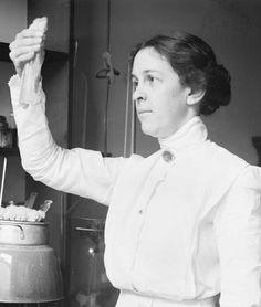 La microbióloga Alice Catherine Evans (1881-1975) nació un 29 de enero. Investigó la bacteriología de la leche y el queso, y demostró que el Bacillus abortus causaba la brucelosis tanto en el ganado como en los seres humanos. Al ser mujer y no