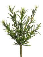 Rosemary Greenery Bush in Green.jpg