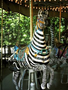 Maybe I don't get out much...but I've never seen a zebra merry go round!