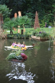 Tiziano Codiferro Master Gardener