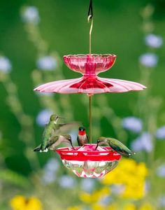 The Humm Blossom Accessory Kit will protect a HummBlossom Hummingbird Feeder from rain and ants with the dome and ant moat.