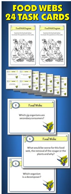 One of my favorite activities for food webs.  A hit with my students and a best seller on TPT.  It comes with 24 cards, teacher instructions, student worksheet and answer key as well as an editable electronic template to customize your own questions.  Student will be able to understand the anatomy of a food web as well as the importance of all the different members.