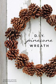 DIY Pinecone Wreath...I have a big pine tree in my backyard...already have a grocery bag full.